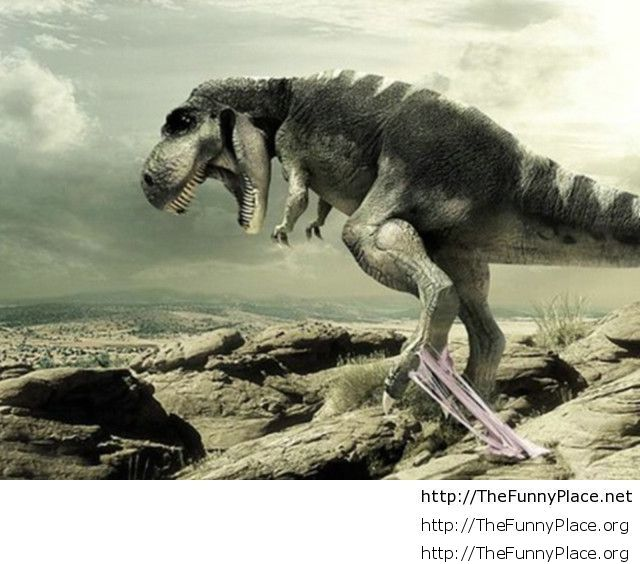 Funny-Dinosaur-Pictures-640x480