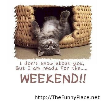 Funny-weekend sayings