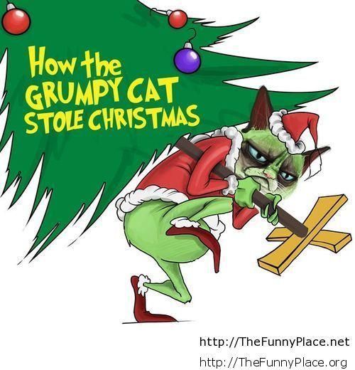 Grumpy stole Christmas