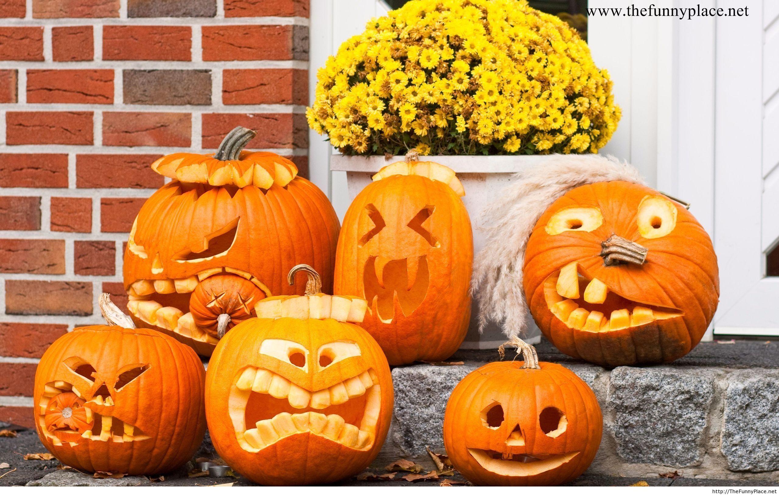 Halloween 2013 funny image