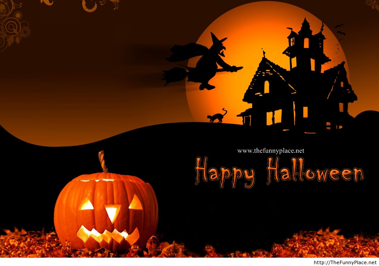 Halloween HD wallpaper funny 2013