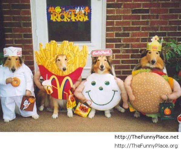 Halloween costumes with dogs