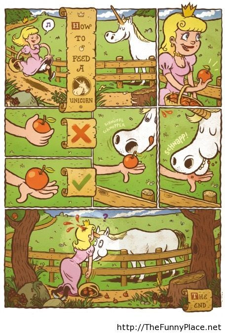 How to feed a unicorn!