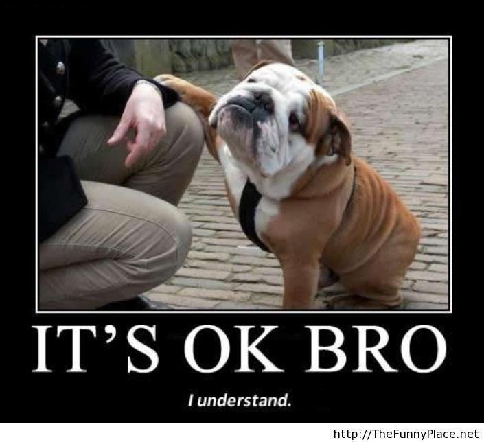 I-understand-bro