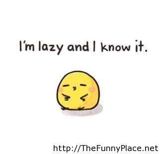 Lazy funny picture