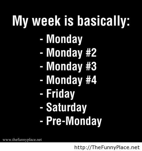 My week is basically
