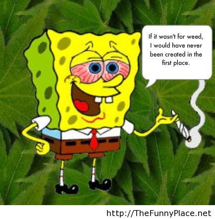 Spongebob funny saying