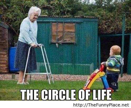 The circle of life funny picture