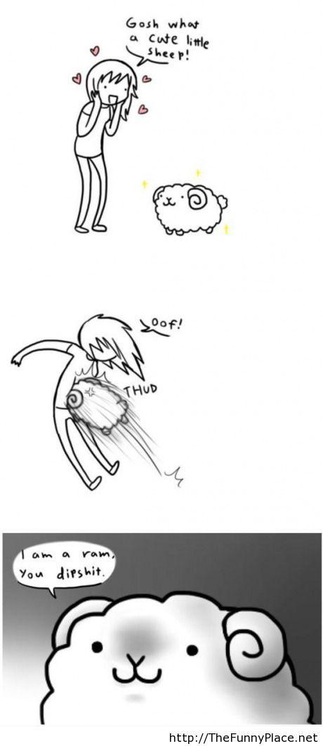 What a cute sheep!