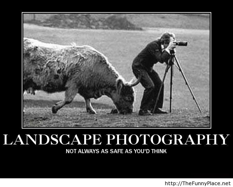 landscapeparody