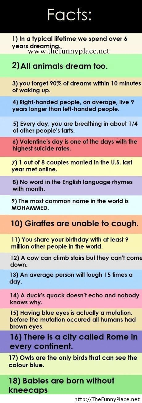 18 Interesting facts