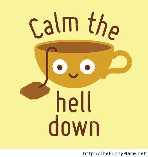 Best Cat Calm Down