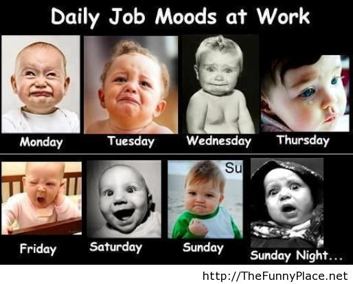 Daily Job Moods At Work Thefunnyplace