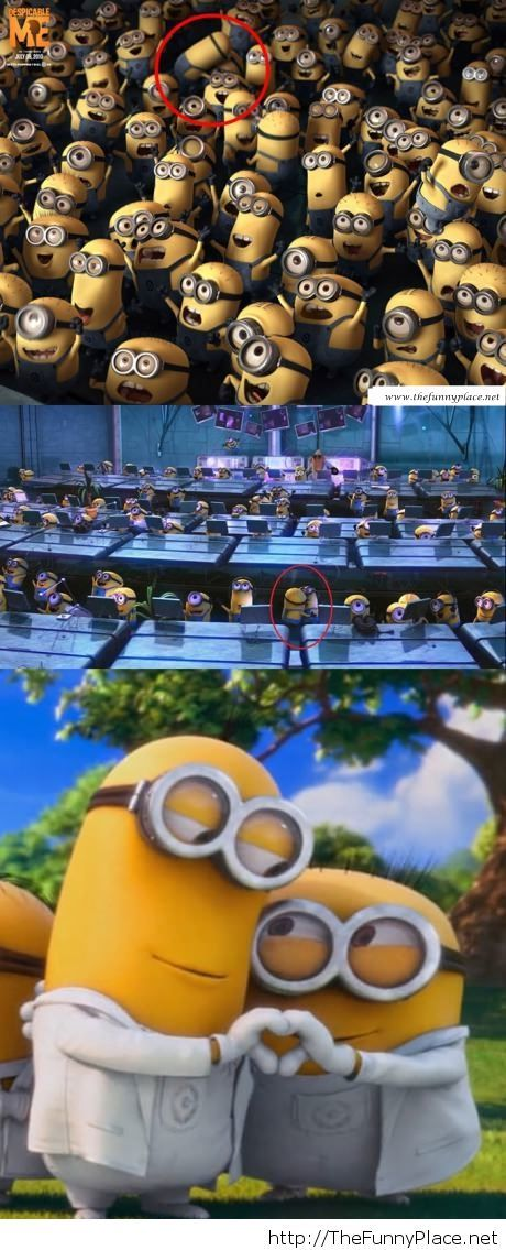 Despicable me non seen scenes