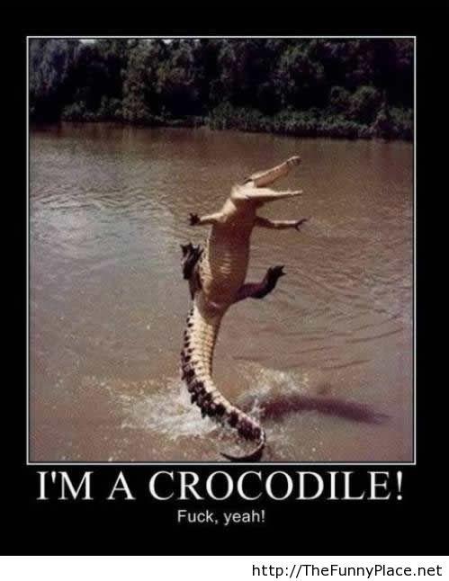 Flying crocodile is real