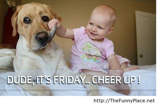 Funny friday picture with a kid and a funny dog