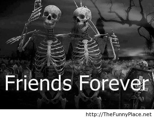 Funny friends forever picture