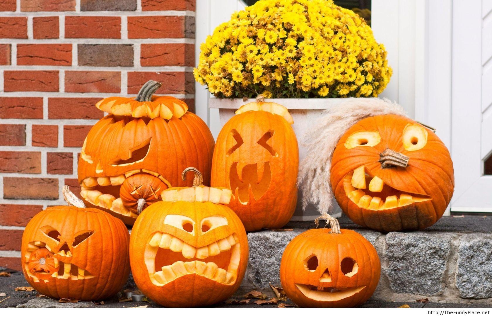 funny halloween pumpkins picture