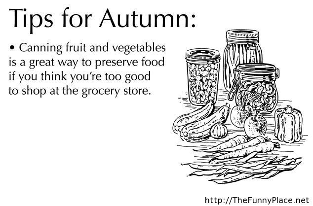 Funny-tips-for-autumn