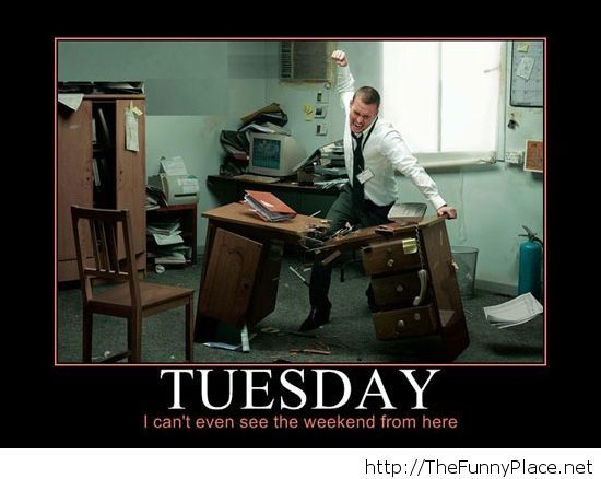 Funny tuesday image with saying