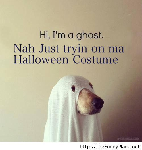 Ghost halloween costume with a dog