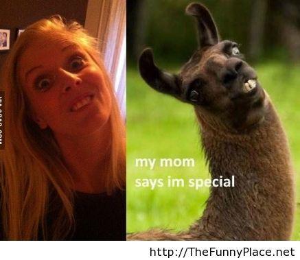 Girl vs animal