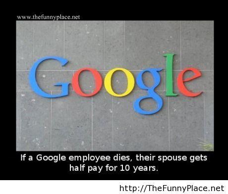 Google true fact