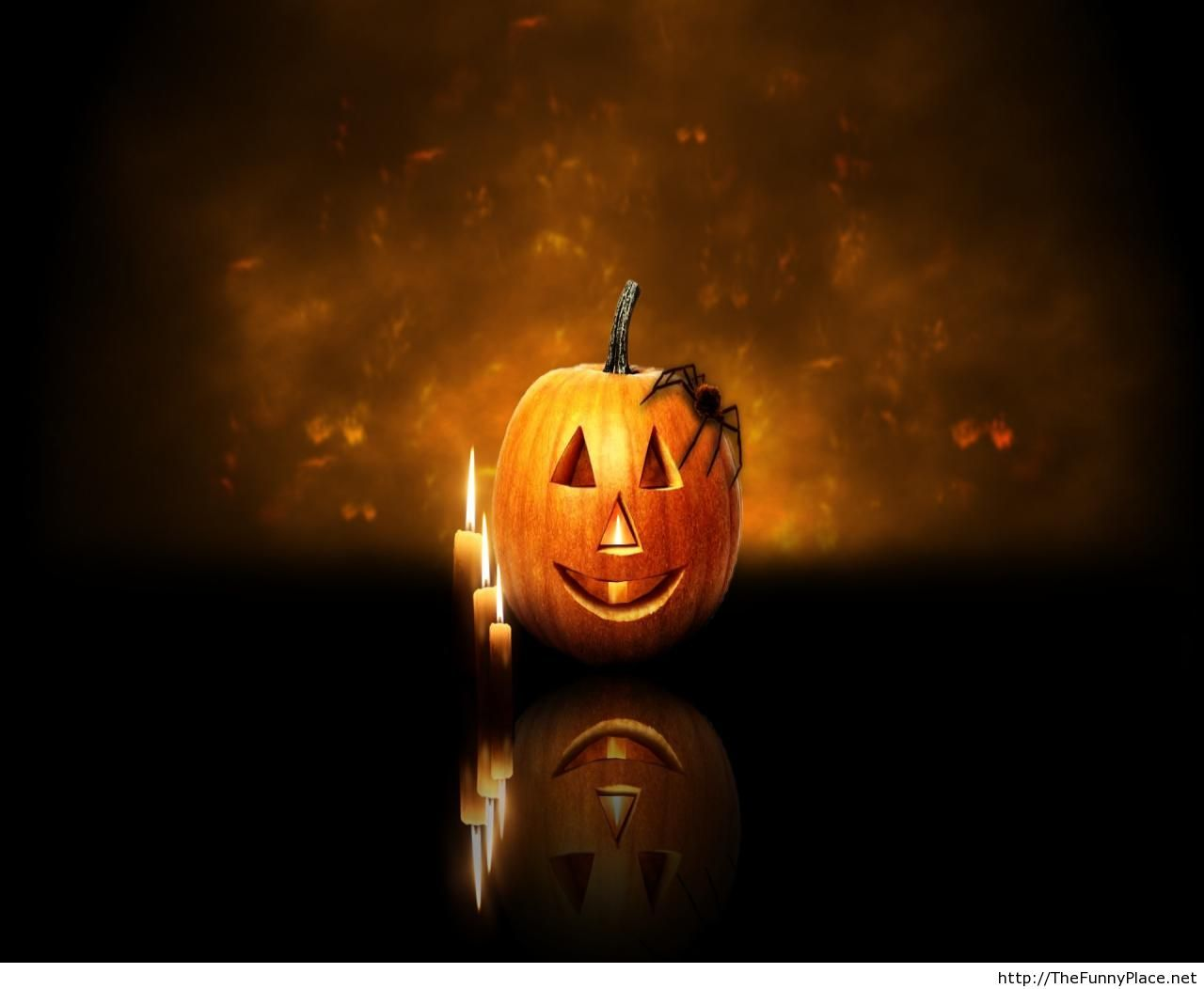 Halloween day 2013 HD wallpaper