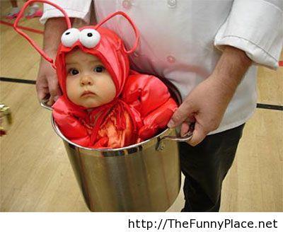 Halloween funny kid costume is inventive