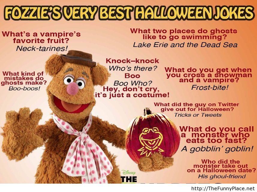 halloween jokes - Funniest Halloween Pictures