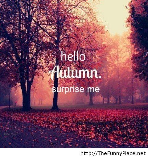 Hello autumn, surprise me