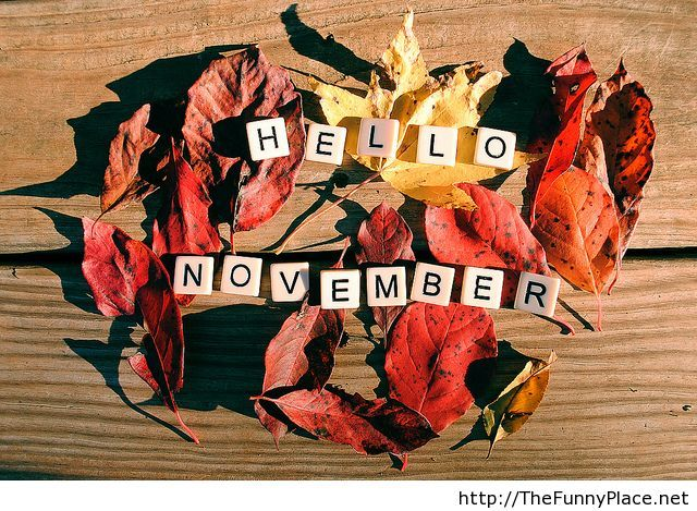 Hello november background