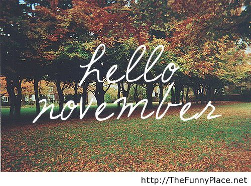 Pic Hello November Thefunnyplace