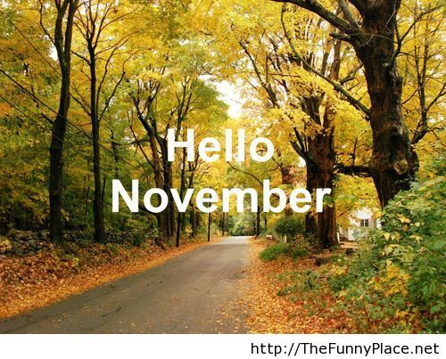 Genial Tagged 2013 Hello November, Awesome Hello November, Cute Hello November,  Fun Hello November, Hello November, Hello November Image, Hello November  Images, ...