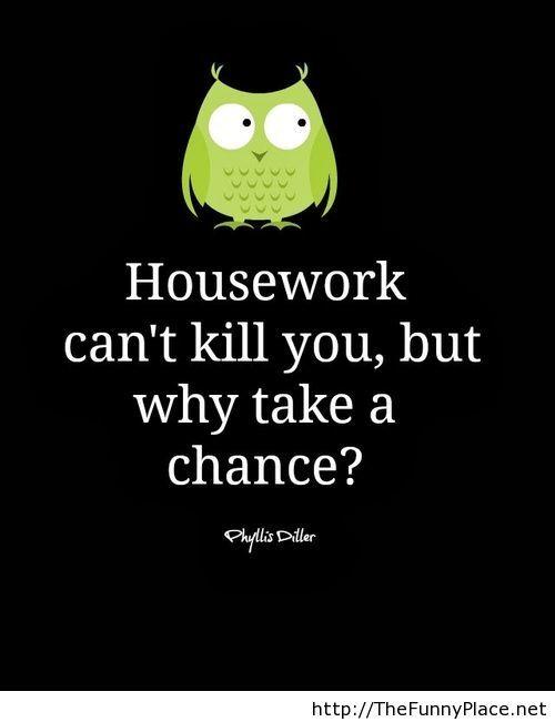 Housework funny saying