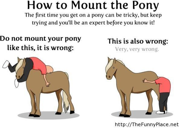 How to mount the pony comic