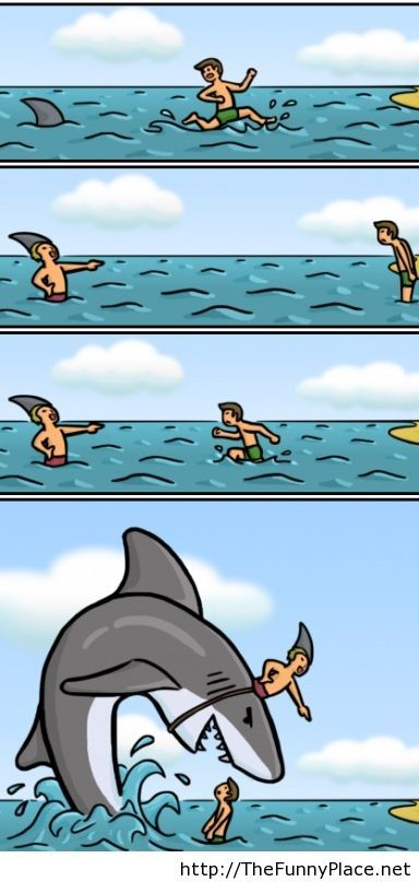 Humor with shark