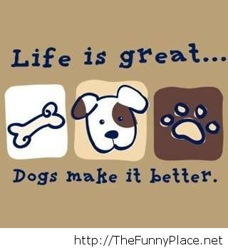 I love dogs wallpaper funny message