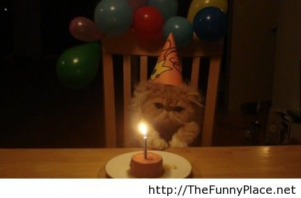 It is my birthday today funny picture