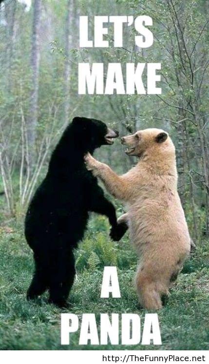 Lets make a panda