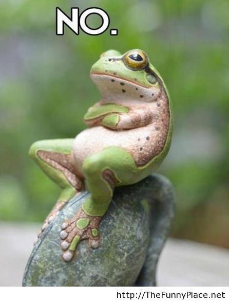 Like a boss frog