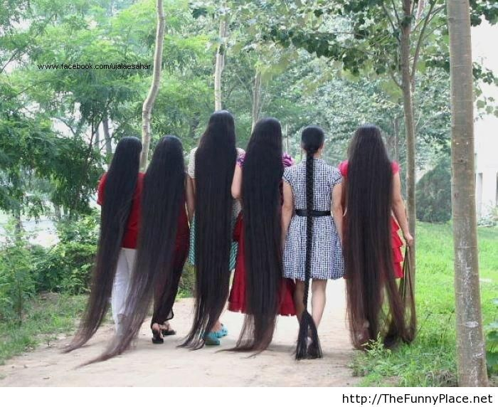 Long hair funny picture