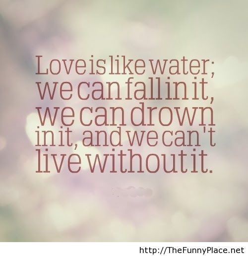 Definition Of Love Quotes Captivating Love Definition Quote  Thefunnyplace