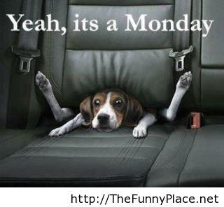 Monday again, funny day