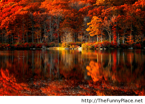 Awesome Autumn Wallpaper TheFunnyPlace