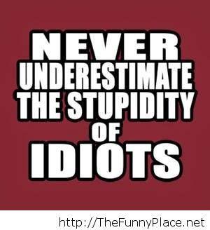 Never underestimate the stupidity