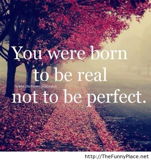 Nobody's perfect quote with image