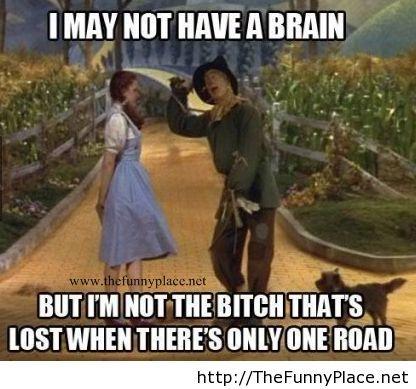 Oh Dorothy...