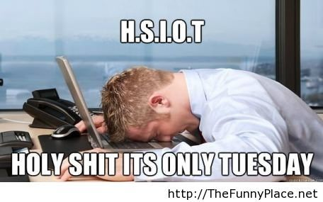 Only tuesday funny picture
