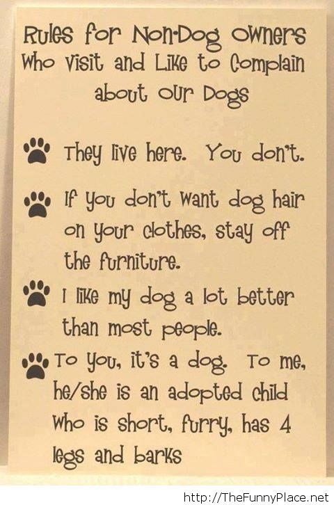 Rules for non dog owners funny